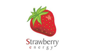 Strawberry Energy Green Energy Solutions, Leotronics Case Study